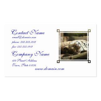 Jaguar de reclinación plantillas de tarjetas de visita