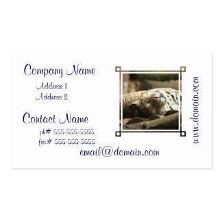Jaguar de reclinación tarjetas de visita