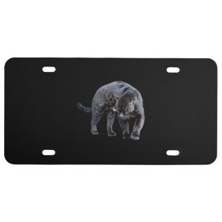Jaguar Diablo plastic car license plate small