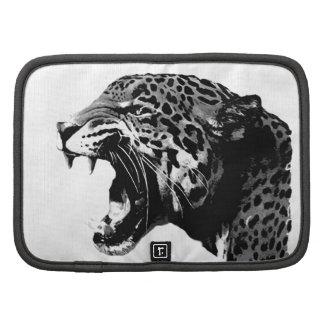 Jaguar Organizadores