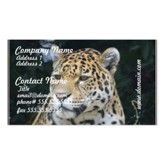 Jaguar Glare Double-Sided Standard Business Cards (Pack Of 100)