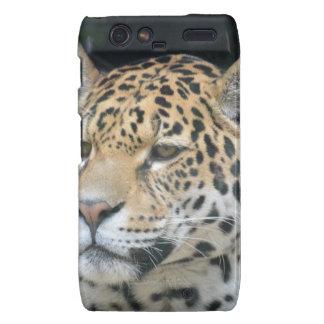 Jaguar Glare Droid RAZR Case