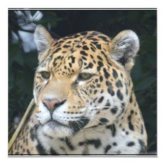 Jaguar Glare Invitation