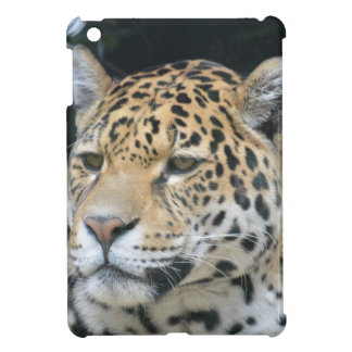 Jaguar Glare iPad Mini Covers