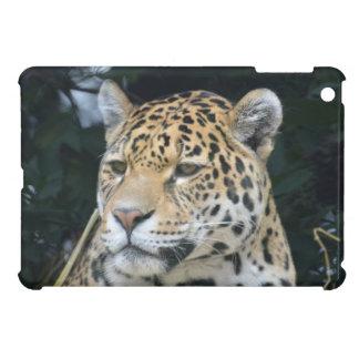 Jaguar Glare iPad Mini Cases
