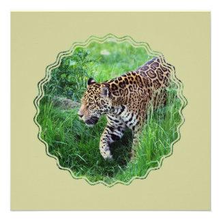 Jaguar Habitat Invitation