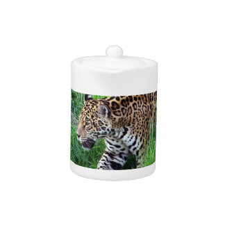 Jaguar Habitat Teapot
