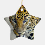 Jaguar hermoso ornamento de reyes magos