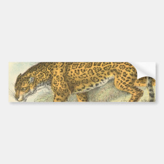 Jaguar Illustration Bumper Sticker