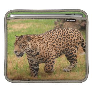 Jaguar iPad Sleeve