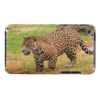 Jaguar  iTouch Case iPod Touch Case-Mate Case