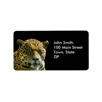 Jaguar Labels