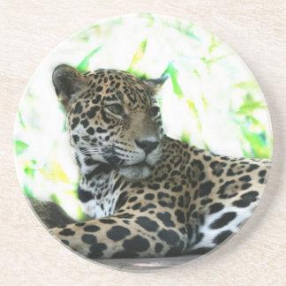 Jaguar looking over shoulder dappled green coasters