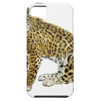 Jaguar Looking with Intent iPhone SE/5/5s Case