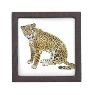 Jaguar Looking with Intent Keepsake Box