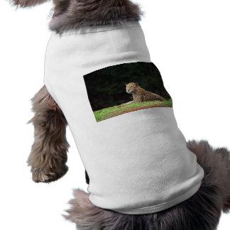 Jaguar Lounging Doggie Shirt