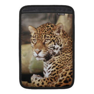 Jaguar MacBook Air Sleeve