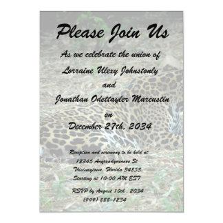 jaguar manchado que miente abajo pareciendo invitación 12,7 x 17,8 cm