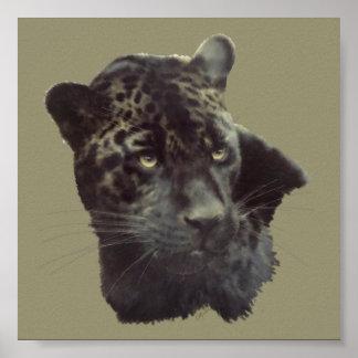 Jaguar negro poster