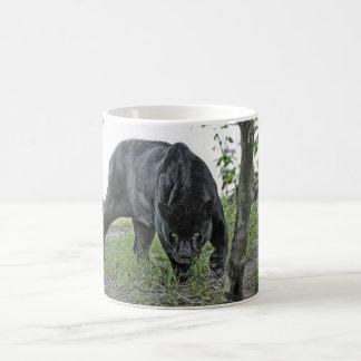 Jaguar negro que acecha imagen panorámica de la taza