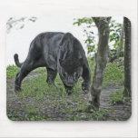 Jaguar negro que acecha Mousepad Alfombrilla De Raton