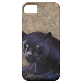 Jaguar negro y caso rústico del iPhone 5 de BG del Funda Para iPhone 5 Barely There