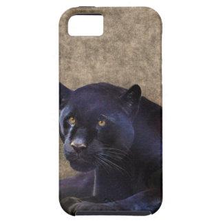 Jaguar negro y caso rústico del iPhone 5 de BG del iPhone 5 Fundas