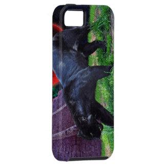 Jaguar negro y eclipsó el caso del iPhone 5 de la iPhone 5 Fundas