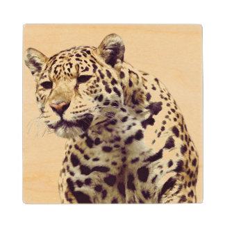Jaguar on Maple Wood Coaster