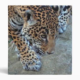 Jaguar On The Prowl 3 Ring Binder