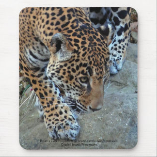 Jaguar On The Prowl Mouse Pad