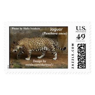 Jaguar (onca) del Panthera 2 Sellos
