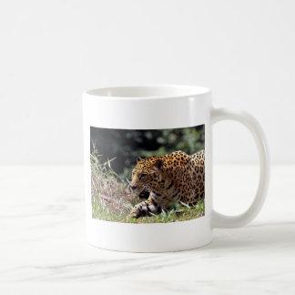 Jaguar (onca del Panthera) Tazas De Café
