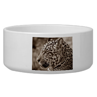 Jaguar Photo Bowl
