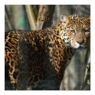 Jaguar Photo Invitation