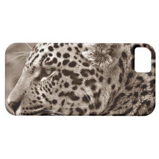 Jaguar Photo iPhone SE/5/5s Case