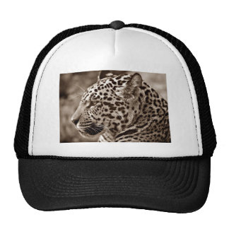 Jaguar Photo Trucker Hat