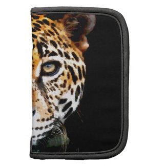 Jaguar Organizador