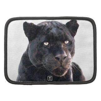 Jaguar Planificador