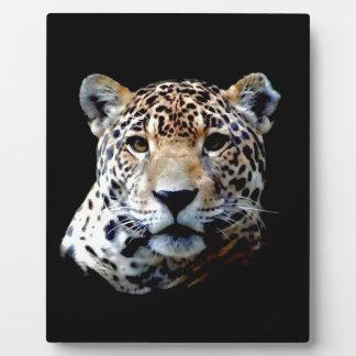 Jaguar Plaque