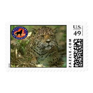 Jaguar Postage Stamp