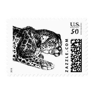 Jaguar Postage Stamps
