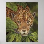 Jaguar Póster