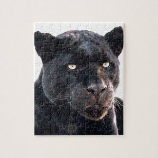 Jaguar Rompecabezas Con Fotos
