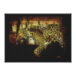 Jaguar salvaje manchó al amante del animal de la p lona envuelta para galerías