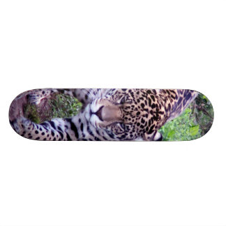 JAGUAR SKATEBOARD DECK