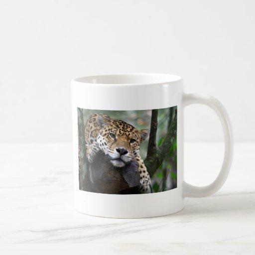 Jaguar suramericano taza clásica