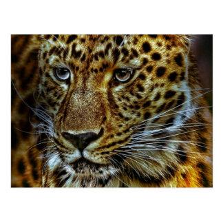 Jaguar Tarjeta Postal