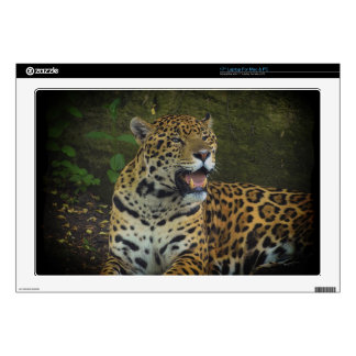 "Jaguar Wild Cat Animal-Lover Electronics Skins 17"" Laptop Decals"