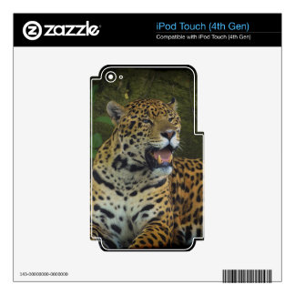 Jaguar Wild Cat Animal-Lover Electronics Skins Decal For iPod Touch 4G
